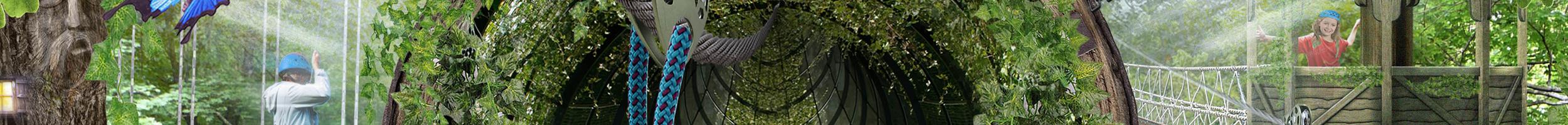 treetopquest-slider-bg